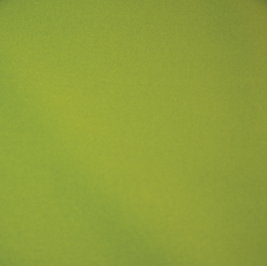 Close up of an apple green colored polyester tablecloth.